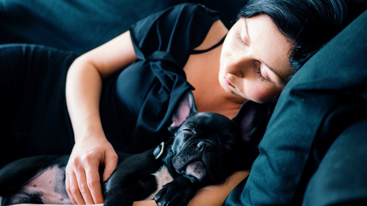 6 Scientific Ways To Fall Asleep MoreQuickly